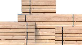 beechwood timber