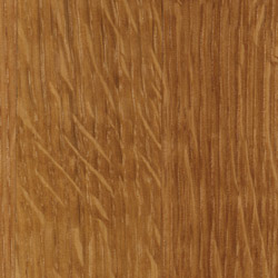species_sample_whiteoak